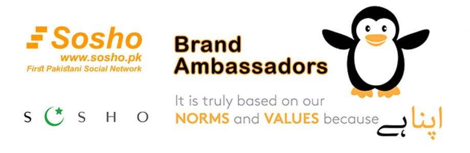 Sosho Brand Ambassadors Cover Image
